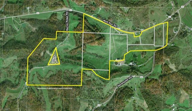 Wolf Run Rd, Sarahsville, OH 43724 (MLS #4071051) :: RE/MAX Edge Realty