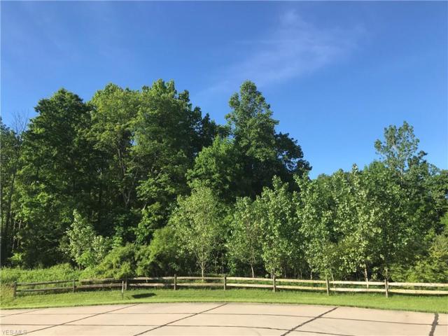 148 Highland Mist Circle, Hinckley, OH 44233 (MLS #4080617) :: RE/MAX Valley Real Estate