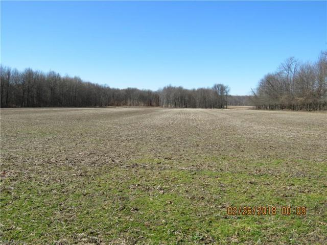 Nichols Rd, Windham, OH 44288 (MLS #4084636) :: RE/MAX Valley Real Estate