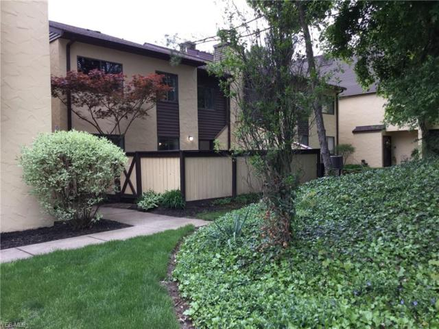 1094 Hampton Ridge Drive, Akron, OH 44313 (MLS #4091673) :: RE/MAX Edge Realty
