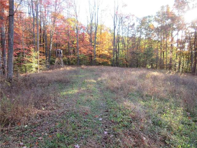 Twyman Hill Road, Blue Rock, OH 43720 (MLS #4100169) :: RE/MAX Trends Realty