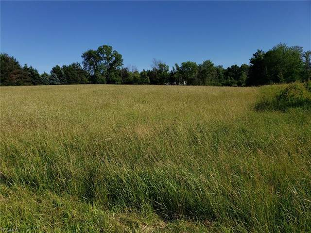 Ford Road, Painesville Township, OH 44057 (MLS #4109534) :: Krch Realty