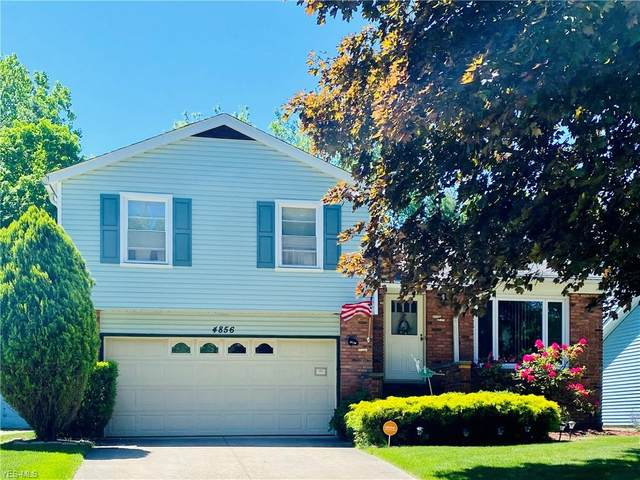 4856 Geraldine Avenue, Richmond Heights, OH 44143 (MLS #4175822) :: The Holden Agency