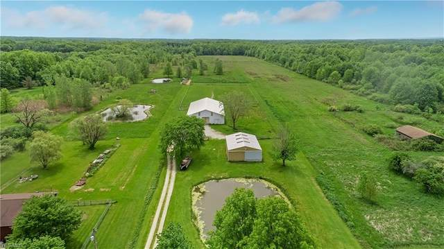 8898 Dunham Road, Litchfield, OH 44253 (MLS #4191531) :: The Art of Real Estate