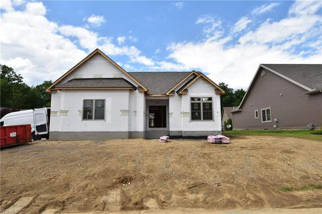 2939 Briarwood Court, Poland, OH 44514 (MLS #4193169) :: The Holden Agency