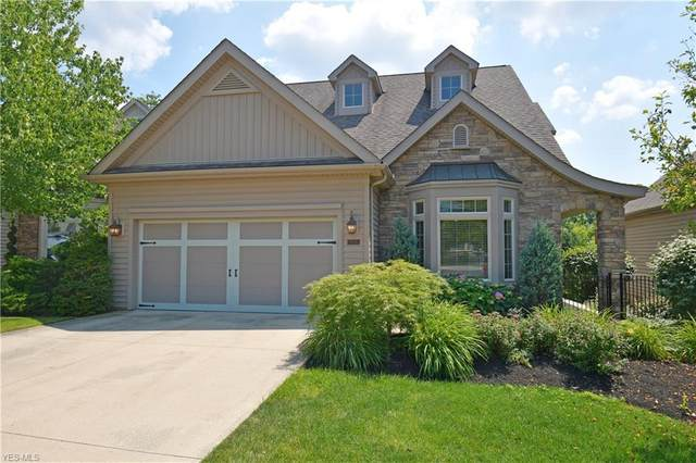 5230 River Trail, Lyndhurst, OH 44124 (MLS #4203832) :: RE/MAX Trends Realty