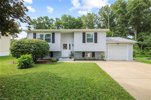 1764 Dumont Drive, Mineral Ridge, OH 44440 (MLS #4215665) :: RE/MAX Trends Realty