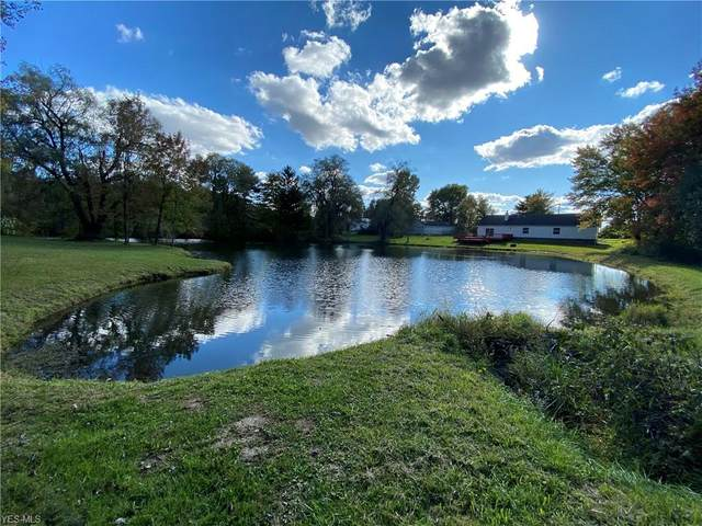 4464 State Route 46 S, Jefferson, OH 44047 (MLS #4230005) :: Keller Williams Chervenic Realty