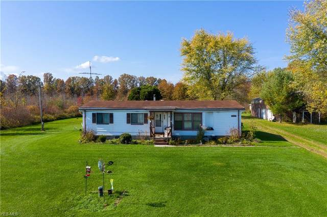 9663 Shanksdown Road, Windham, OH 44288 (MLS #4233682) :: The Art of Real Estate