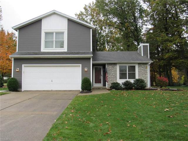 4555 Linda Drive, Vermilion, OH 44089 (MLS #4233691) :: The Holden Agency