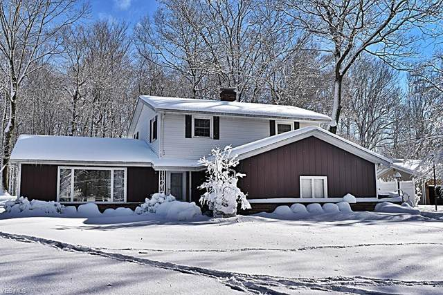 7033 Shaner Drive, Walton Hills, OH 44146 (MLS #4234452) :: RE/MAX Trends Realty