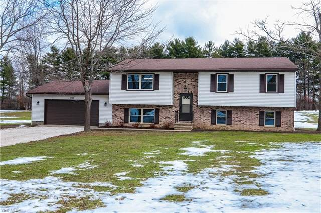 1790 Lafevre Road, Geneva, OH 44041 (MLS #4244119) :: The Art of Real Estate