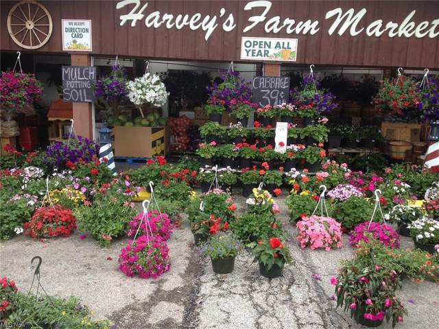 701 East Street, Fairport Harbor, OH 44077 (MLS #4255227) :: The Crockett Team, Howard Hanna
