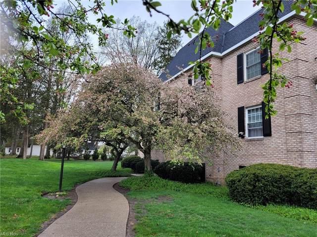 1155 Charter Oak Lane #205, Westlake, OH 44145 (MLS #4256100) :: The Art of Real Estate