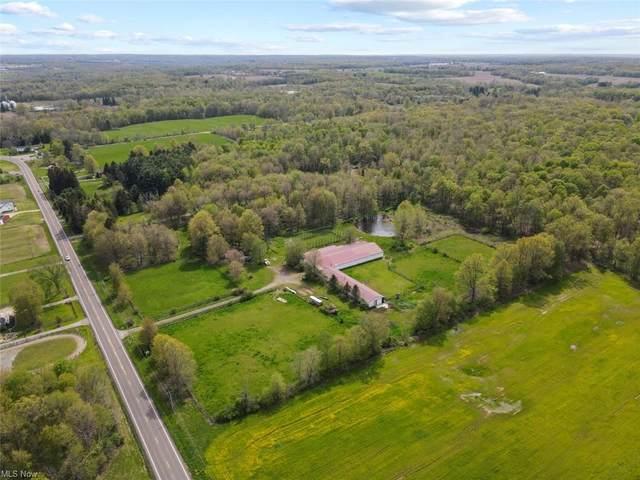 8670 S Salem Warren Road, Canfield, OH 44406 (MLS #4257546) :: Select Properties Realty