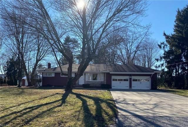 294 Chestnut Street, Leetonia, OH 44431 (MLS #4258531) :: Tammy Grogan and Associates at Cutler Real Estate