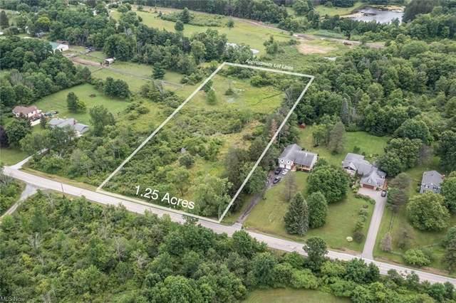 VL Snyder Lot 1 Road, Chagrin Falls, OH 44022 (MLS #4291753) :: Tammy Grogan and Associates at Keller Williams Chervenic Realty