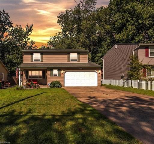 5584 Deerborn Avenue, Mentor, OH 44060 (MLS #4298054) :: The Holden Agency