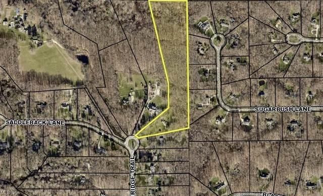 333 Timberidge Trail, Gates Mills, OH 44040 (MLS #4301298) :: The Jess Nader Team | REMAX CROSSROADS