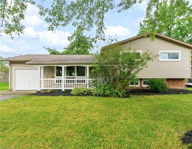 4793 Vienna Avenue, Youngstown, OH 44505 (MLS #4309459) :: The Jess Nader Team   REMAX CROSSROADS