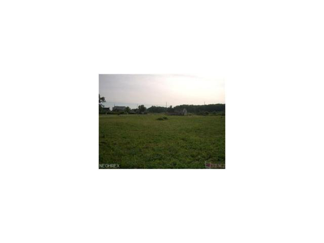 Lot 56 Doeskin St NE, Canton, OH 44704 (MLS #3467511) :: Tammy Grogan and Associates at Cutler Real Estate