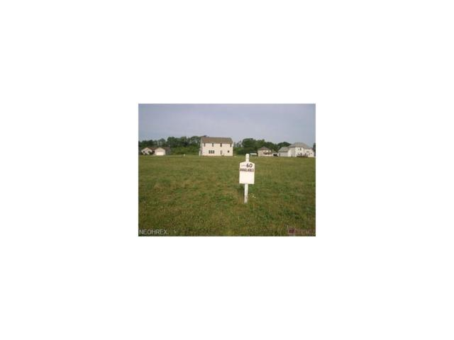 Lot 60 Marietta Ave NE, Canton, OH 44704 (MLS #3467516) :: Tammy Grogan and Associates at Cutler Real Estate