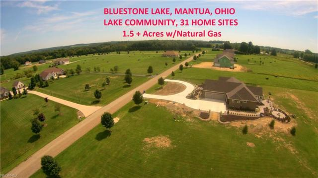 30-S/L Bluestone Lake Dr, Mantua, OH 44255 (MLS #3473019) :: Tammy Grogan and Associates at Cutler Real Estate