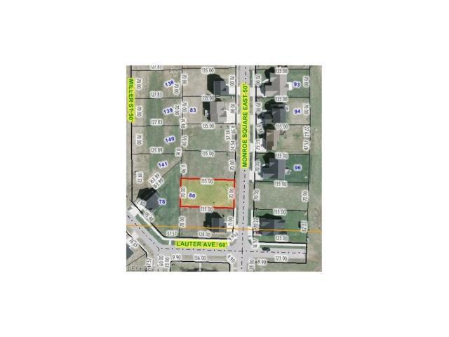 Lot 80 Monroe Sq, Barberton, OH 44203 (MLS #3679073) :: RE/MAX Edge Realty