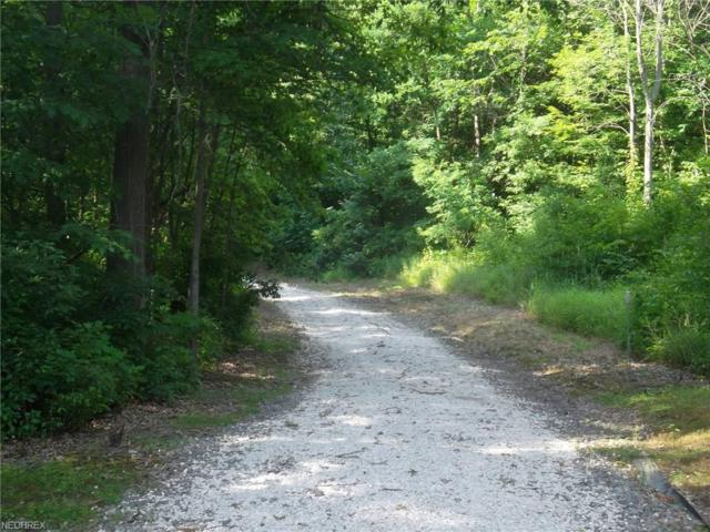 10008 Cable Line, Diamond, OH 44412 (MLS #3858000) :: RE/MAX Edge Realty
