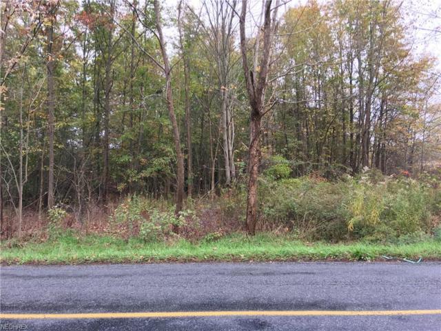0 Cable Line, Newton Falls, OH 44444 (MLS #3950306) :: The Crockett Team, Howard Hanna
