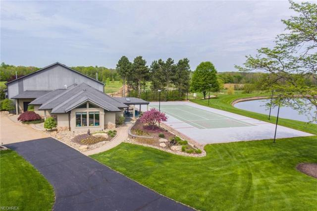 7291 Stone Road, Medina, OH 44256 (MLS #3957025) :: The Art of Real Estate