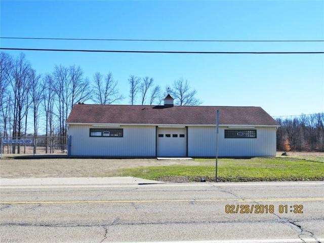 8972 State Route 88, Windham, OH 44288 (MLS #3972041) :: Keller Williams Chervenic Realty