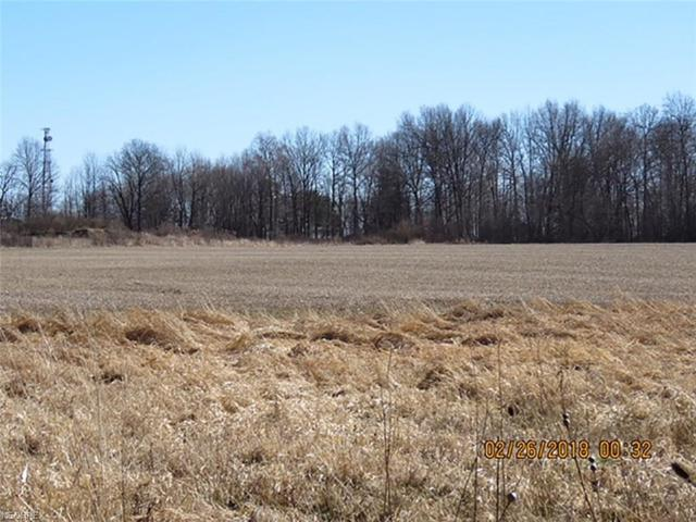 State Route 88, Windham, OH 44288 (MLS #3972048) :: Keller Williams Chervenic Realty