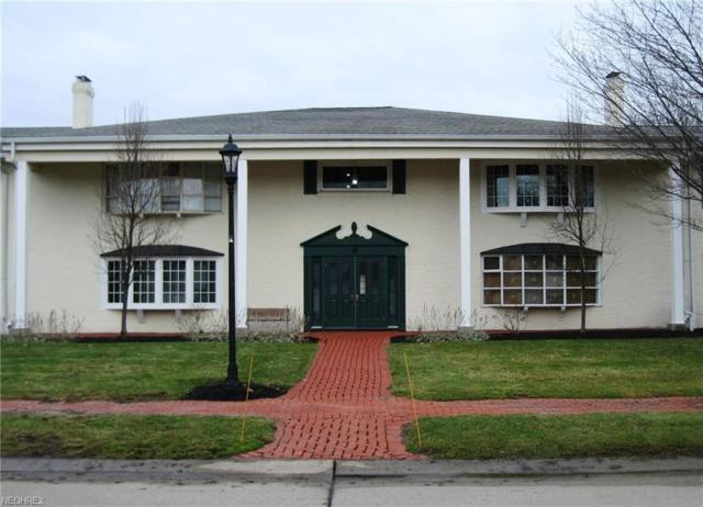 6 Meadowlawn Dr #8, Mentor, OH 44060 (MLS #3972201) :: RE/MAX Trends Realty