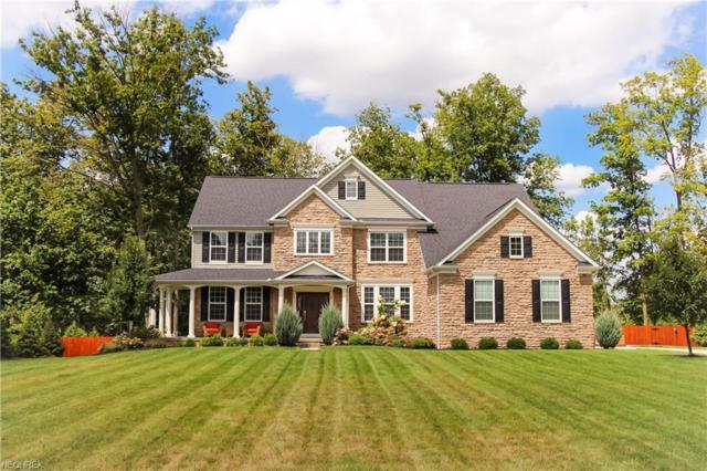 4549 Joeys Ln, Medina, OH 44256 (MLS #3986290) :: Tammy Grogan and Associates at Cutler Real Estate