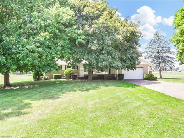 12033 William Penn Ave NE, Hartville, OH 44632 (MLS #4016474) :: RE/MAX Trends Realty
