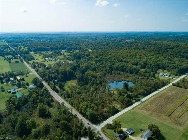 11905 Bell Road, Newbury, OH 44065 (MLS #4130218) :: TG Real Estate
