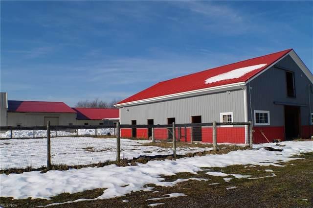 8560 Billings Road, Kirtland, OH 44094 (MLS #4245013) :: The Crockett Team, Howard Hanna