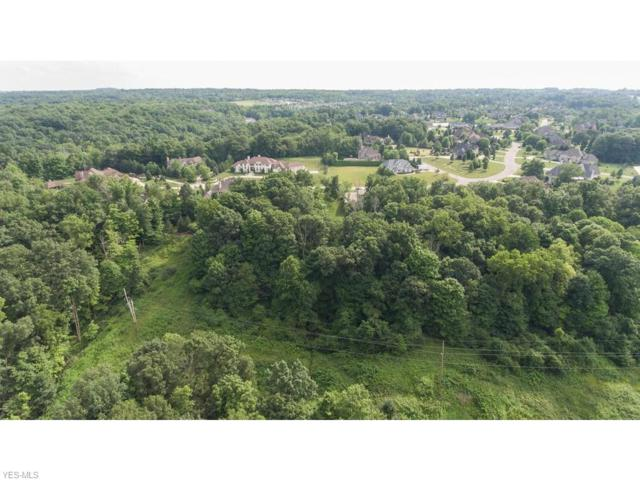 3153 Aviemore Way, Richfield, OH 44286 (MLS #3736393) :: The Art of Real Estate