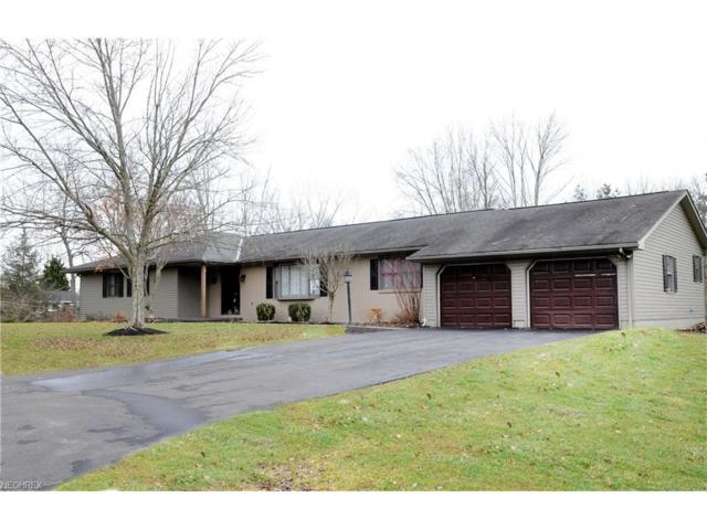 10700 Belle Dr, Norwich, OH 43767 (MLS #3955409) :: Tammy Grogan and Associates at Cutler Real Estate