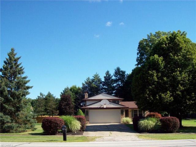 32694 Mills Rd, Avon, OH 44011 (MLS #3976209) :: The Crockett Team, Howard Hanna