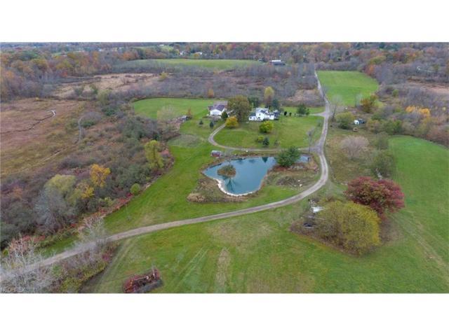 8200 Seasons Rd, Streetsboro, OH 44241 (MLS #3951126) :: Tammy Grogan and Associates at Cutler Real Estate