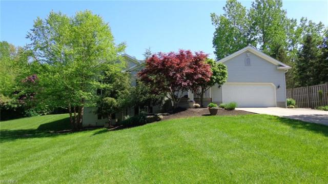 11370 Prouty Rd, Concord, OH 44077 (MLS #3968418) :: The Crockett Team, Howard Hanna
