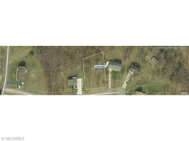 Trappers Hollow Rd, Zanesville, OH 43701 (MLS #3722209) :: Tammy Grogan and Associates at Cutler Real Estate