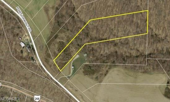 State Route 266, Stockport, OH 43787 (MLS #3972006) :: RE/MAX Edge Realty