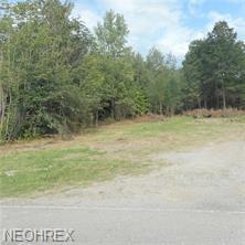 Grandview, Lake Milton, OH 44429 (MLS #3980379) :: Keller Williams Chervenic Realty