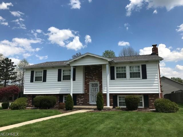 1121 Lantern Ln, Niles, OH 44446 (MLS #3984371) :: The Crockett Team, Howard Hanna