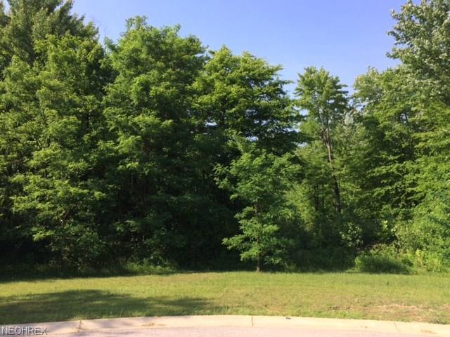 Sub Lot 60 Logging Ct, Geneva, OH 44041 (MLS #3986116) :: The Crockett Team, Howard Hanna