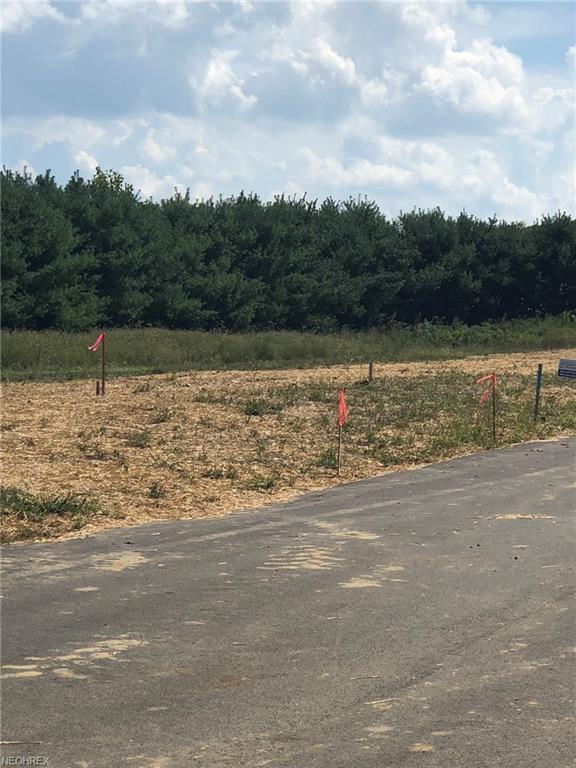 920 Cabot Drive, Canal Fulton, OH 44614 (MLS #3987025) :: The Crockett Team, Howard Hanna