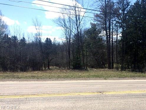 4211 Royalton Road, North Royalton, OH 44133 (MLS #3987725) :: RE/MAX Valley Real Estate